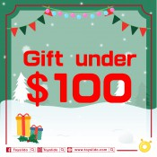 $100內禮物