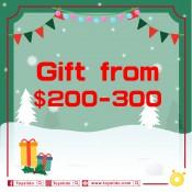 $200 - $300 禮物